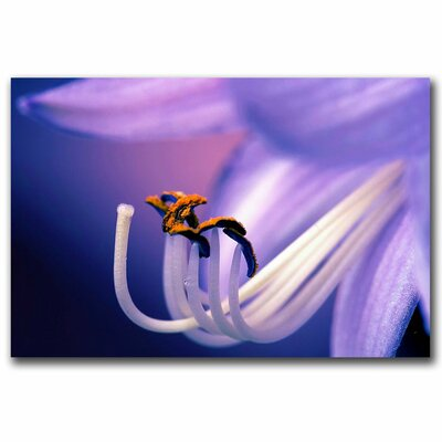 Trademark Fine Art 'Eternal Seductiveness' Canvas Art