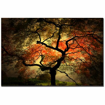 "Trademark Fine Art ""Japanese"" by Philippe Sainte-Laudy Photographic Print on Canvas"