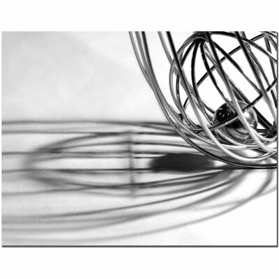 "Trademark Fine Art ""Whisk"" by Tammy Davison Photographic Print on Canvas"