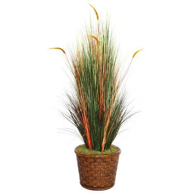 Tall Onion Grass with Cattails in Fiberstone Planter