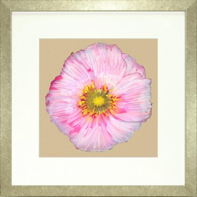 Floral Living Poppy Petals 3 Framed Graphic Art