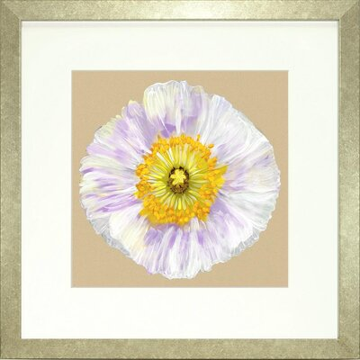 Floral Living Poppy Petals 4 Framed Graphic Art