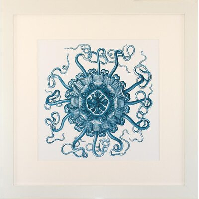 Seaside Living Ocean Gems II Framed Wall Art