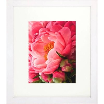 Floral Living Coral Peonies I Framed Graphic Art