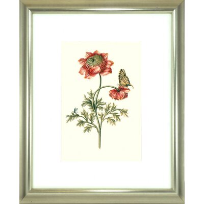 Floral Living Flora and Fauna IV Framed Graphic Art