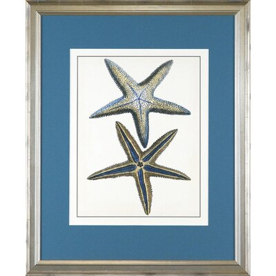 Seaside Living Starfish One Framed Wall Art
