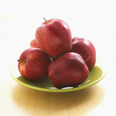iCanvasArt Red Apples on a Plate Photographic