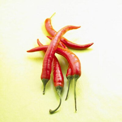 iCanvasArt Red Chili Peppers Photographic