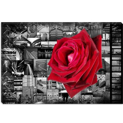 iCanvasArt Rose in City Canvas Wall Art