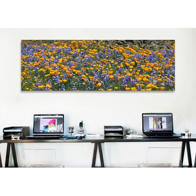 iCanvasArt Panoramic Table Mountain, California Photographic Print on Canvas