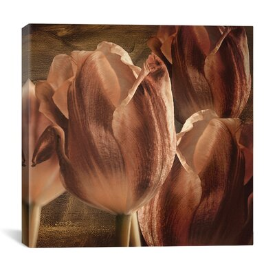 """iCanvasArt """"Copper Tulips"""" Canvas Wall Art by Mindy Sommers"""