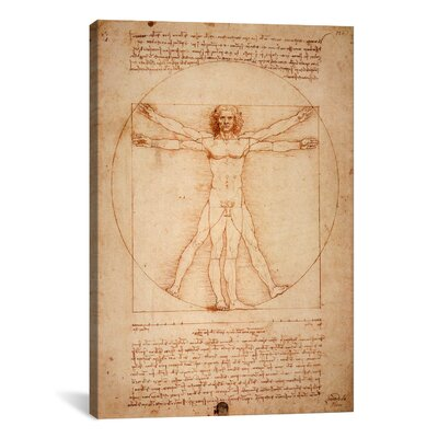 iCanvasArt 'Vitruvian Man 1492' by Leonardo Da Vinci Graphic Art on Canvas