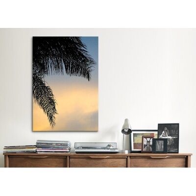 iCanvasArt 'Sundown Sky' by Harold Silverman - Foilage and Greenery Photographic Print on Canvas