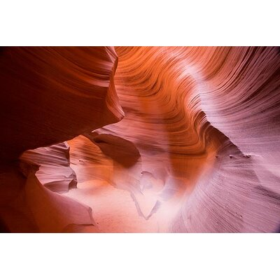 iCanvasArt 'Spiral III' by Moises Levy Photographic Print on Canvas