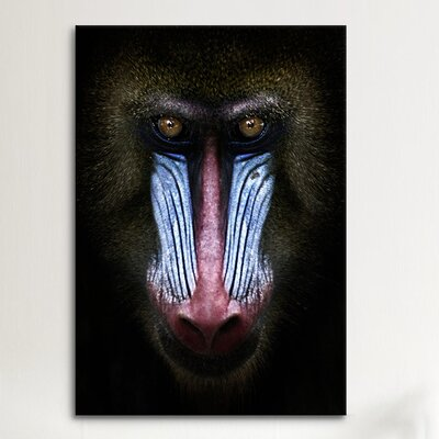 iCanvasArt SD Smart 'Mandrill' Photographic Print on Canvas
