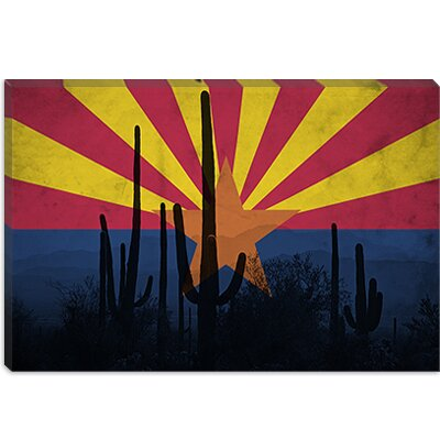 iCanvasArt Arizona Flag, Cactus Grunge Canvas Wall Art