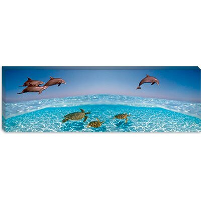 iCanvasArt Bottlenose Dolphin Jumping While Turtles Swimming Under Water Canvas Wall Art