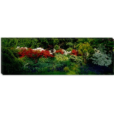 iCanvasArt Flowers in a Garden, Baltimore, Maryland Canvas Wall Art