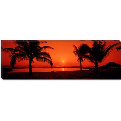 iCanvasArt Lydgate Park, Kauai, Hawaii Canvas Wall Art