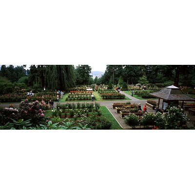 iCanvasArt International Rose Test Garden, Washington Park, Portland, Oregon Canvas Wall Art