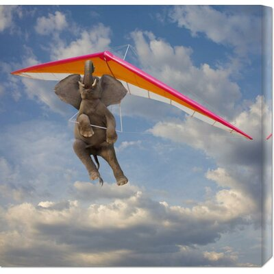 Global Gallery 'Flying Elephant' by John Lund Stretched Canvas Art