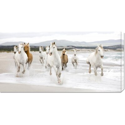 Global Gallery 'Horses on the Beach (detail)' by Zero Creative Studio Stretched Canvas Art