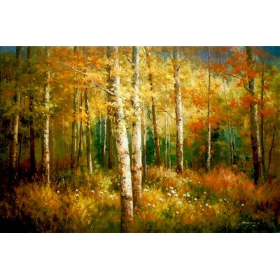 North American Art High Country Colors Canvas Wall Art