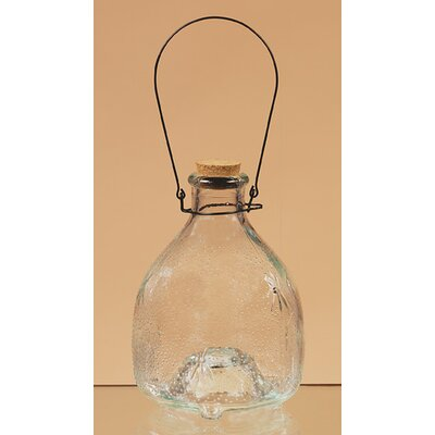 Oddity Inc. Glass Lantern