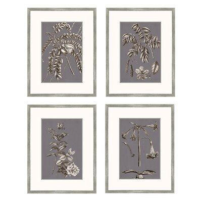 Buchoz Flowers Framed Graphic Art in Gray Plum