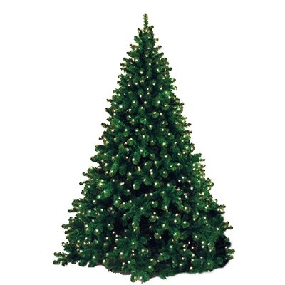 Queens of Christmas 12' Classic Sequoia Pre Lit Tree