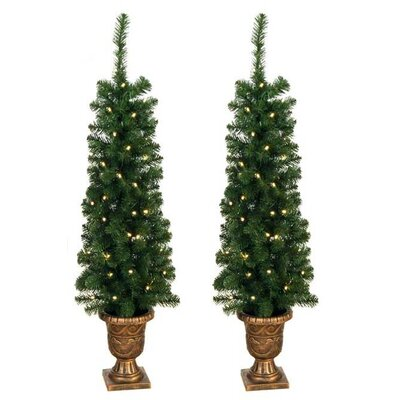 Jolly Workshop Entryway Porch 4' Green Artificial Christmas Tree with 60 Pre-Lit Lights (Set of 2)