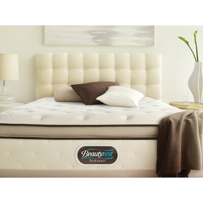 Simmons TruEnergy Caterina Plush Memory Foam Top Mattress
