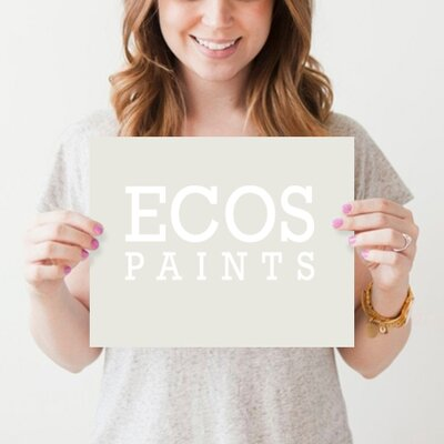 Ecos Paints Frost Gloss Paint
