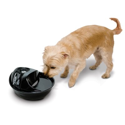 Pioneer Pet Ceramic Drinking Fountain in Black