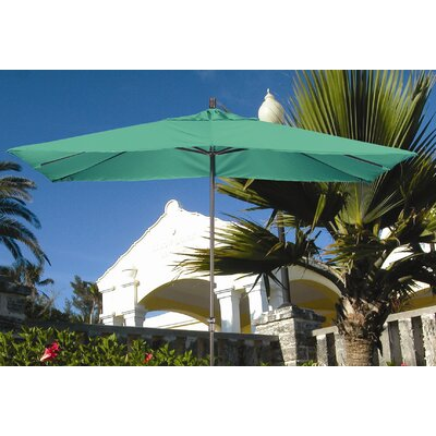 Dayva International 11' Premier Umbrella