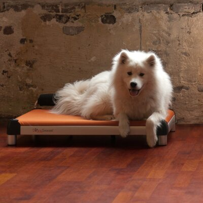 Dutch Dog Dog Sleeper with an Inside Memory Foam Layer and a Anodized Frame
