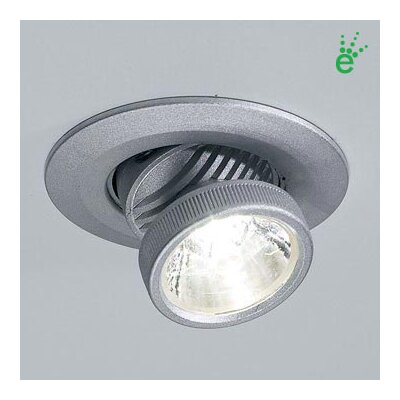 Bruck Ledra Recessed Lighting Trim