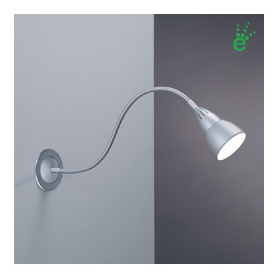 Bruck Ledra Display JBox Driver Picture Light Gooseneck Wall Lamp