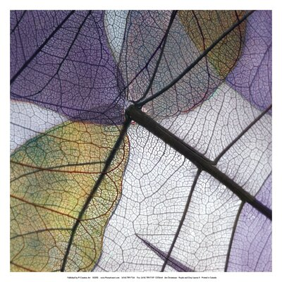 Purple and Grey Leaves II by Jim Christensen Photographic Print