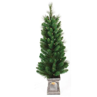 Sterling Inc. 4' Green Concord Pine Christmas Tree with 70 Clear Twinkling Lights with Window Pot and Stand