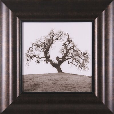 "Art Effects Hillside Oak Tree Petite Wall Art - 19"" x 19"""