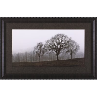 Art Effects Autumn Fog Framed Artwork