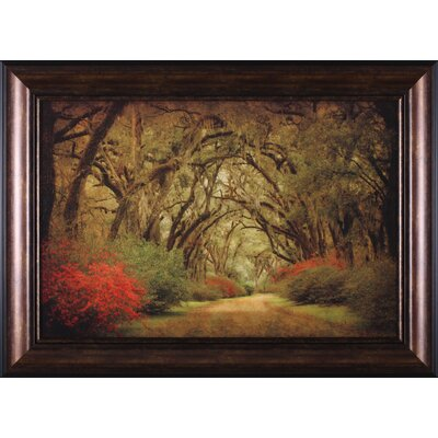 Road Lined with Oaks and Flowers Wall Art