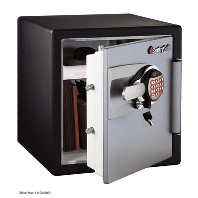 Sentry Safe Electronic Safe