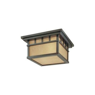 Dolan Designs Barton 2 Light Outdoor Flush Mount