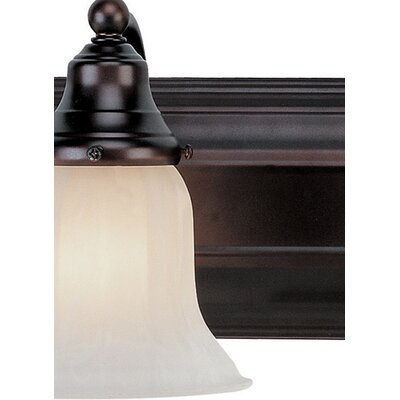 Dolan Designs Richland Vanity Light  in Royal Bronze