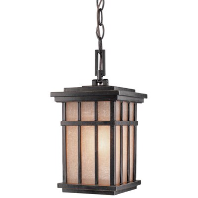 Dolan Designs Freeport 1 Light Outdoor Hanging Lantern
