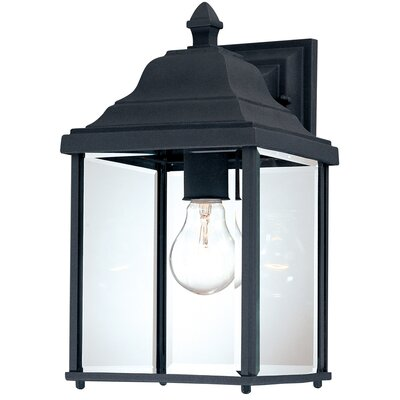 "Dolan Designs Charleston 13"" H Outdoor Wall Lantern in Black"