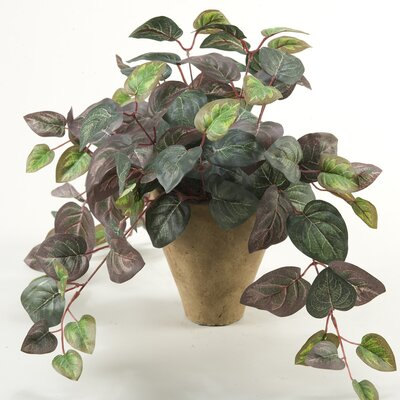 D & W Silks Oxalis Ivy Floor Plant in Pot
