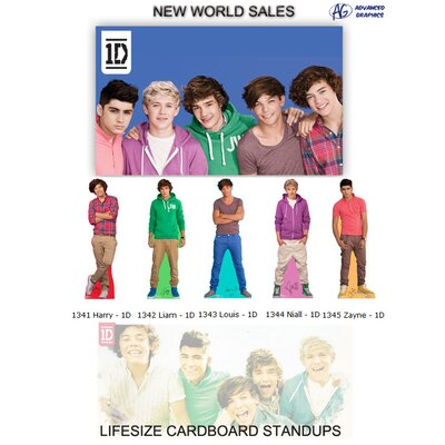 Advanced Graphics One Direction - Niall Lifesized Standup